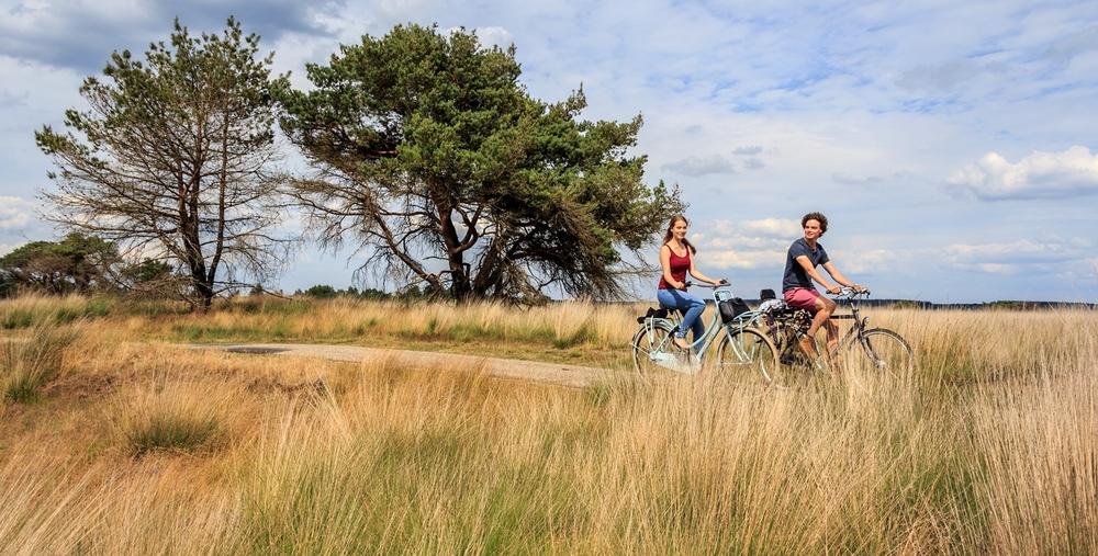 fietsen op veluwe