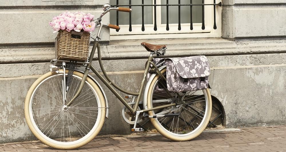 fiets voordrager