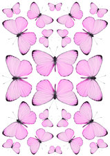 Fietsstickers vlinders roze