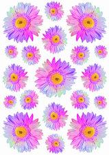 Fietsstickers Gerbera multicolor