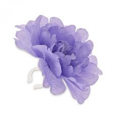 Stuurbloem Basil pioenroos paars