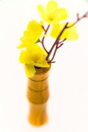 fietsvaas houten bloemenvaas geel